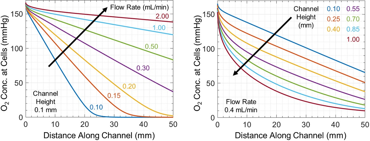 Oxygen concentration at the cell monolayer as a function of distance along the microchannel