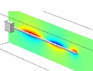 Structural-Acoustic Analysis of Immersed Beam