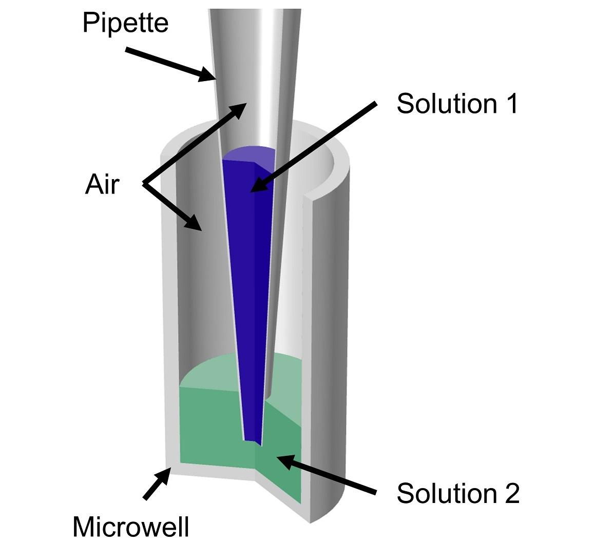 Geometry of a micropipette tip and microwell filled with different solutions